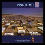IlGiradischi.com - Vinili Pink Floyd A Momentary Lapse Of Reason