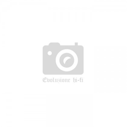 IlGiradischi.com - Stilo per Testina Goldring 2500